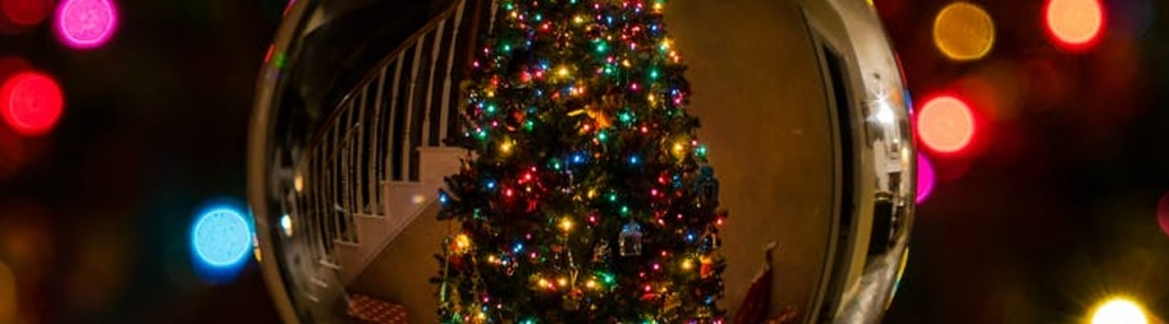 be smart about where you buy your tree - Best Place To Buy A Christmas Tree